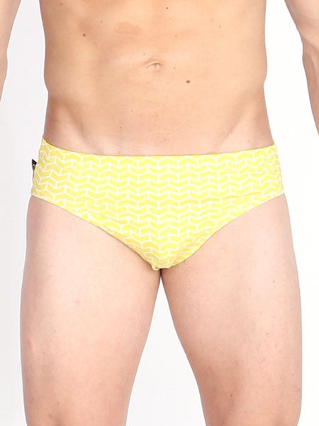 Brick Chevron Swim Brief