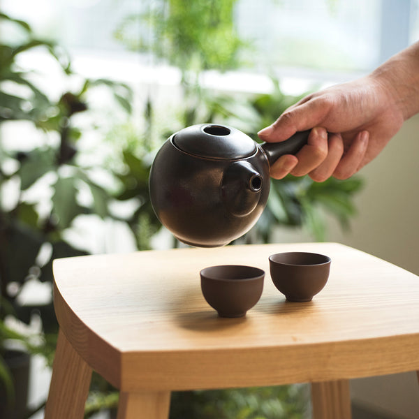 Pro Tea 350ml Kyusu Teapot (Gunpowder)