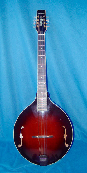 RARE Steven Andersen Mandocello - Chicago Pawners & Jewelers