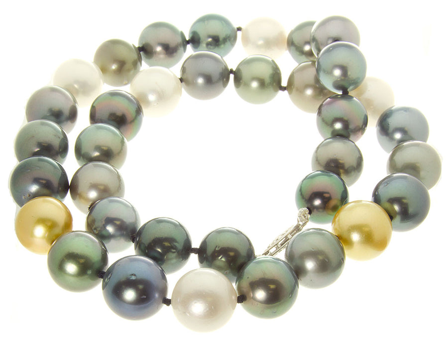 Multi-Color South Sea & Tahitian Pearl Necklace - Chicago Pawners & Jewelers