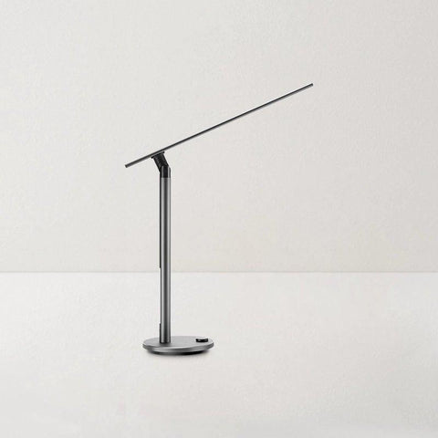 Dual Light Source Desk Lamp Home & kitchen LIFEASE