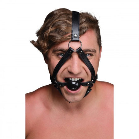 NEW...Head Harness with Ball Gag