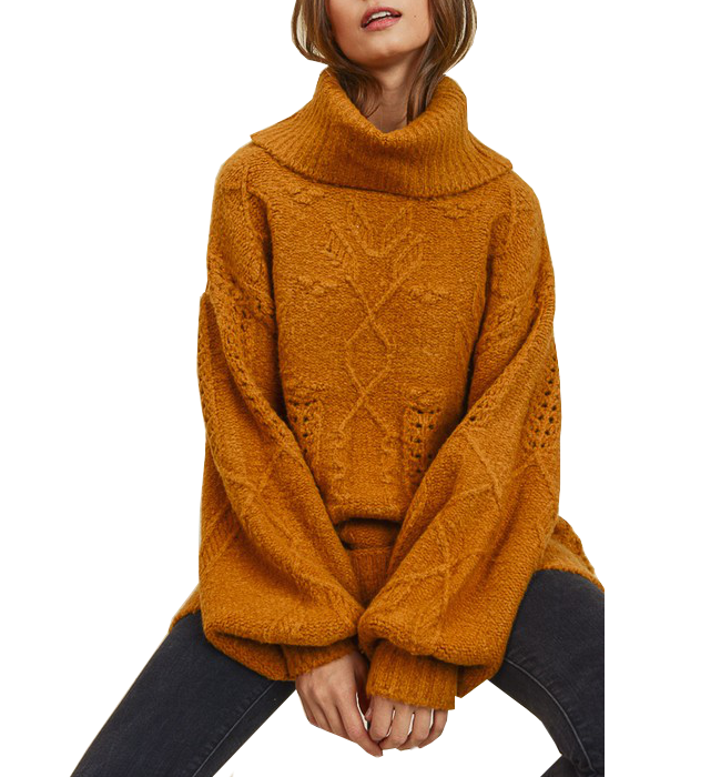 Nordic Cable Knit Turtleneck
