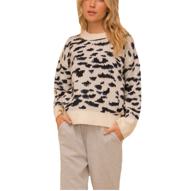 Leopard + Navy Sweater - Hudson Square Boutique