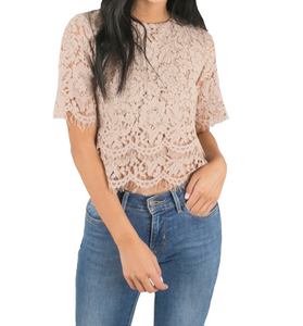 Cropped Lace in Taupe