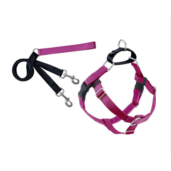 Raspberry Freedom Harness & Leash