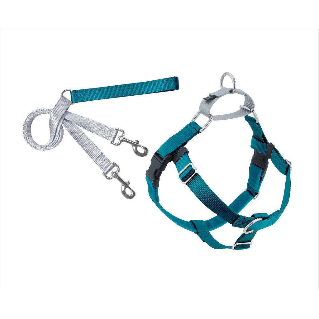 Teal Freedom Harness &  Leash