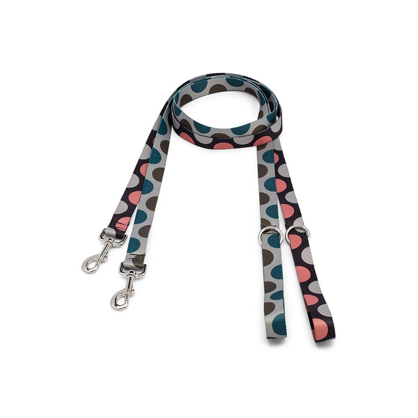 Polka Dot Webbing Leash