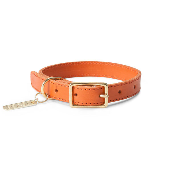 Leather Collar in Orange