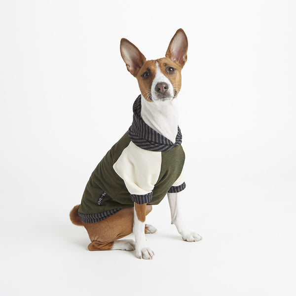 soft olive bamboo knit cotton fleece pet hoodie with off white sleeves and harness hole