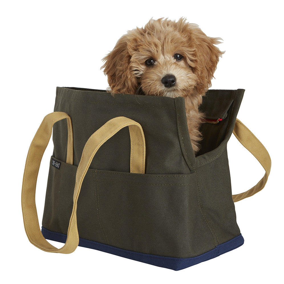 Canvas Pet Tote Small - 5 colors!