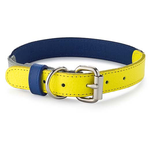Neon Blue Leather Collar