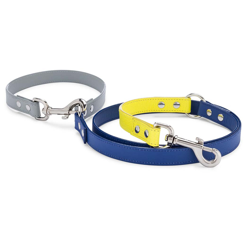 Neon Blue Colorblock Leather Adjustable Leash