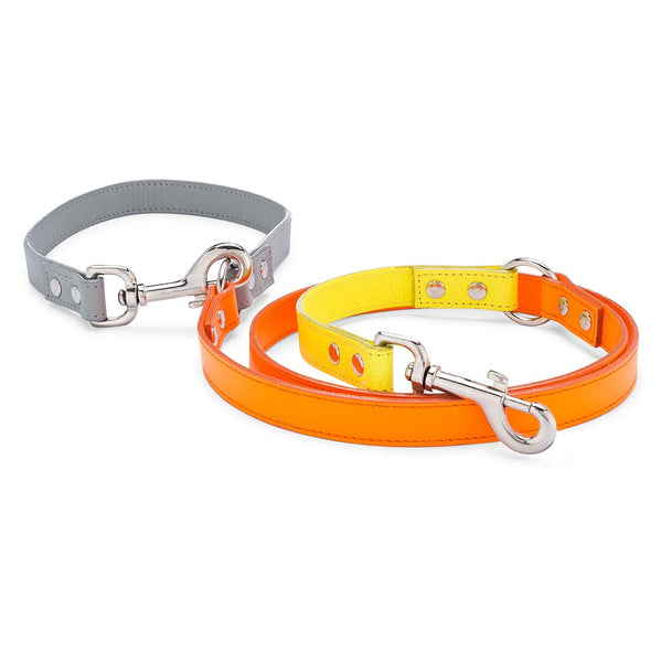 Neon Orange Colorblock Leather Adjustable Leash