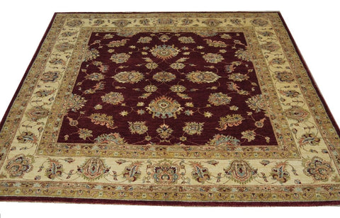 19284-Chobi Ziegler Hand-Knotted/Handmade Afghan Rug/Carpet Tribal/Nomadic Authentic
