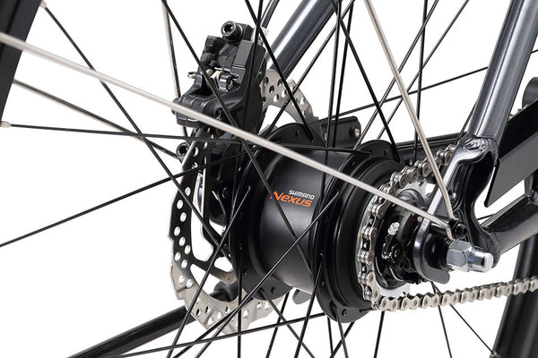 XDS Electric Bicycle