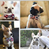 Adjustable Dog Collar Bow Tie