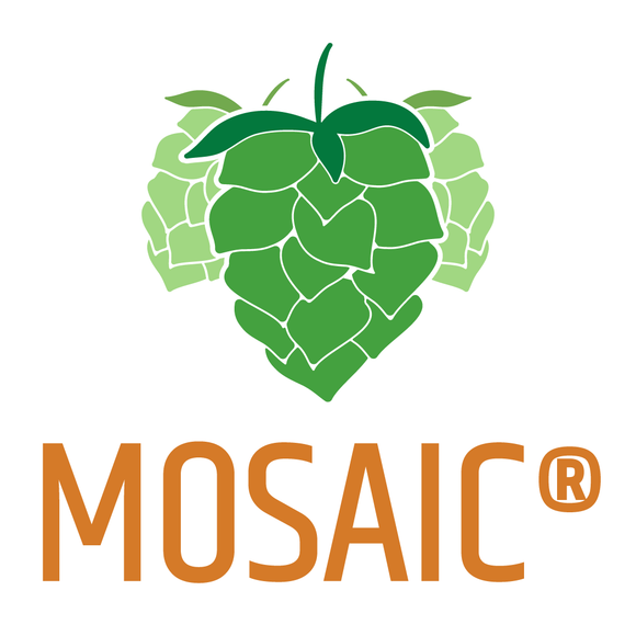 2016 Spot Special Mosaic® - Intensely Tropical, Sweet Citrus, Berries and Rose. Also lends to bittering.