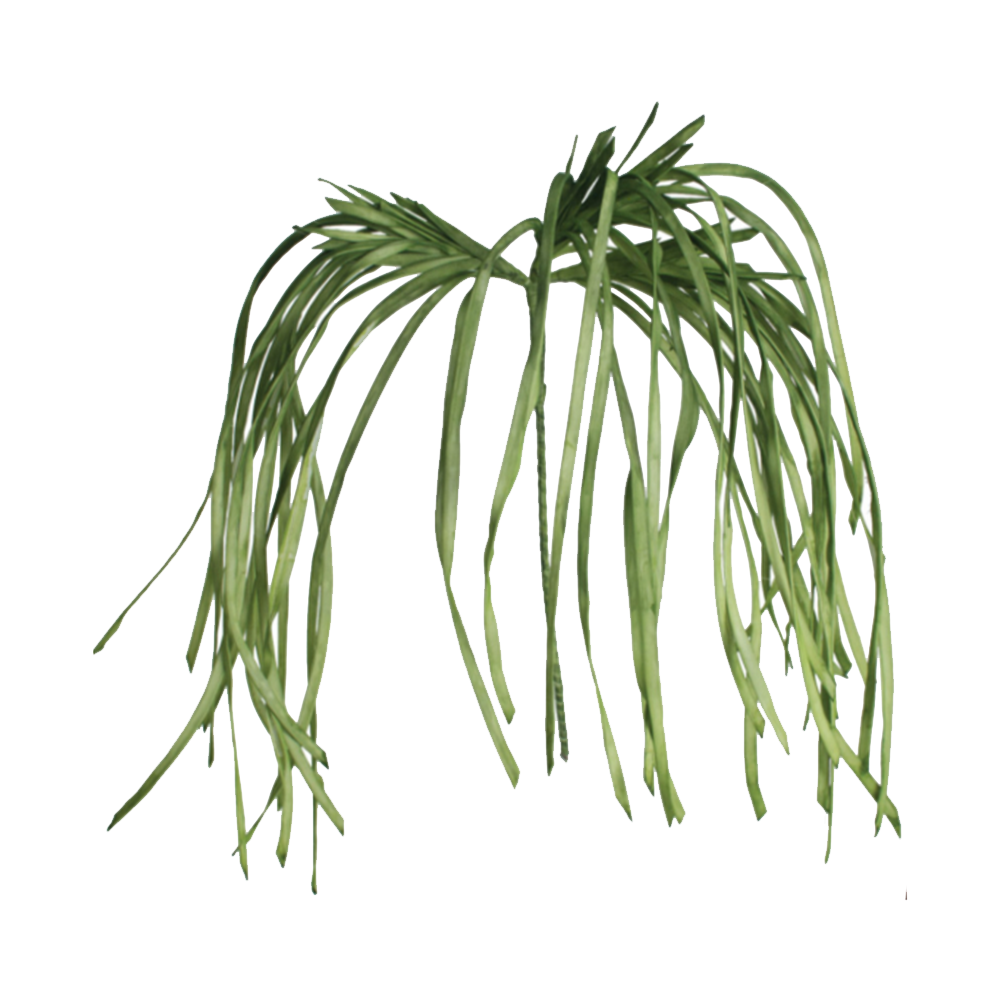 Dwell Chic-A Grassy Bunch Vase Filler-Floral