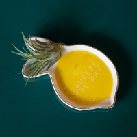 Dwell Chic-When Life Gives You Lemons Dish-Accessory