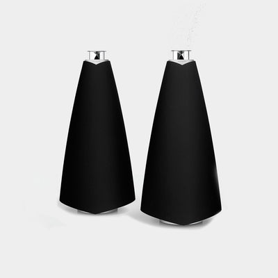Powerful speakers from Bang & Olufsen called the BeoLab 20