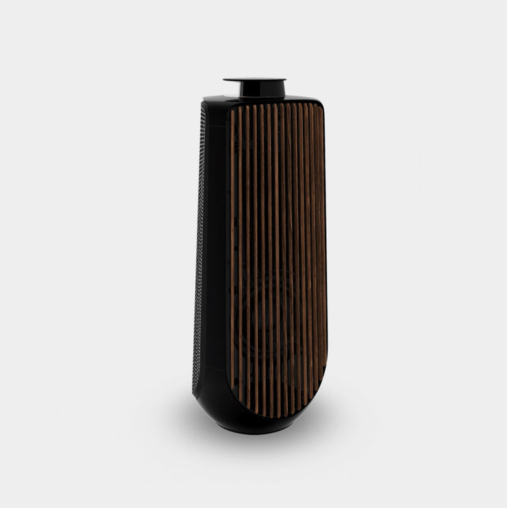 beolab 50 in piano black is one of the best home loudspeakers money can buy