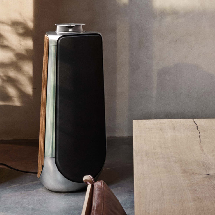 If you want one of the best speakers money can buy then consider the beolab 50 by Bang & Olufsen