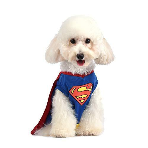 Superman Dog Costume - It's Okay To Be Weird