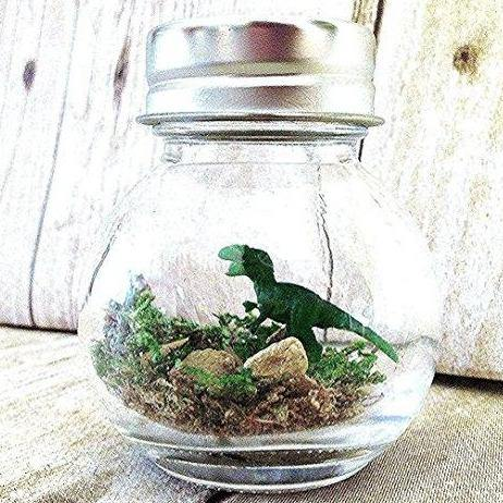 T-Rex Dinosaur Terrarium - It's Okay To Be Weird