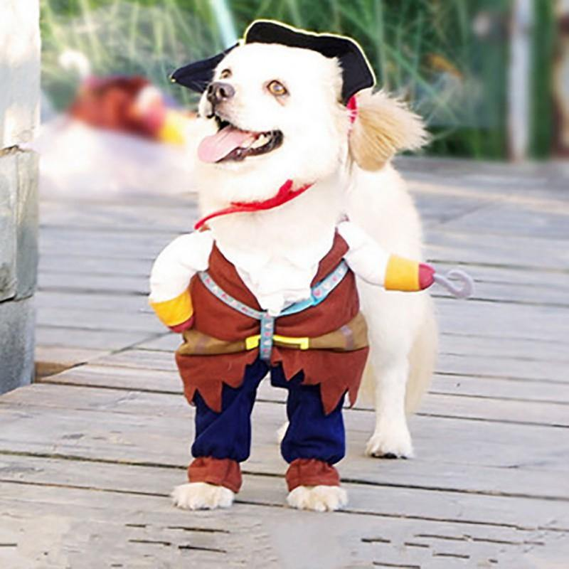 Pirate Pet Costume - It's Okay To Be Weird