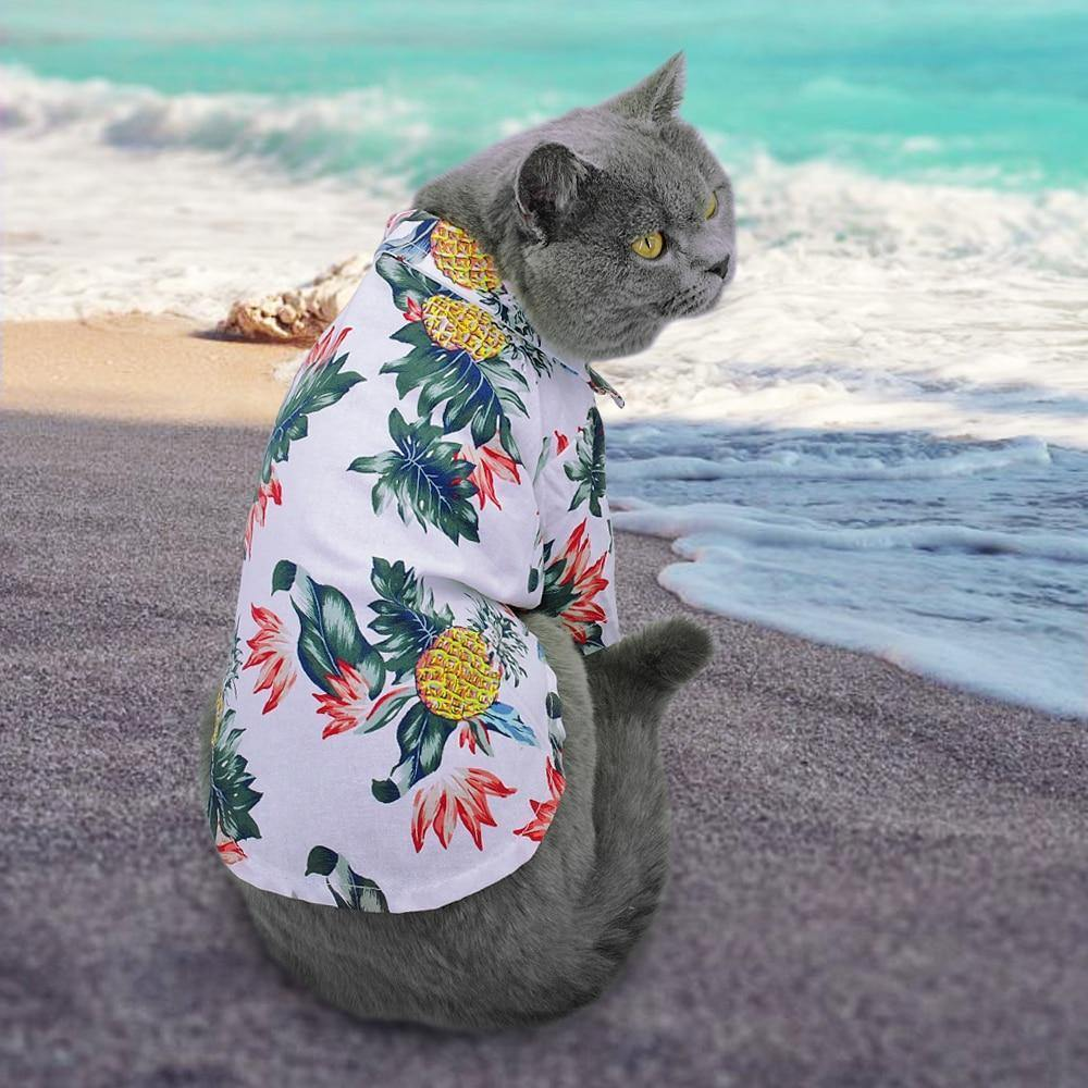 Aloha Pet Shirt - It's Okay To Be Weird