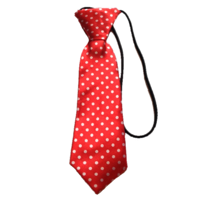 Boys Tie - Red Polka