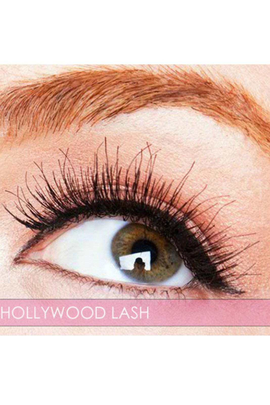 Hollywood Lash