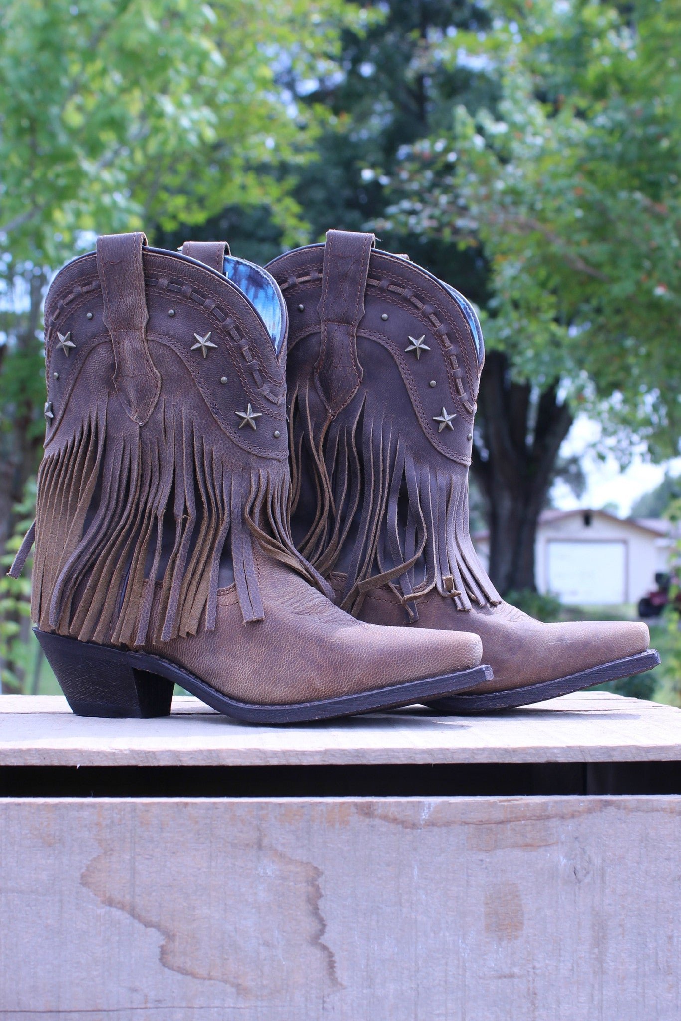Dingo: Hang Low Fringe Boots, Brown