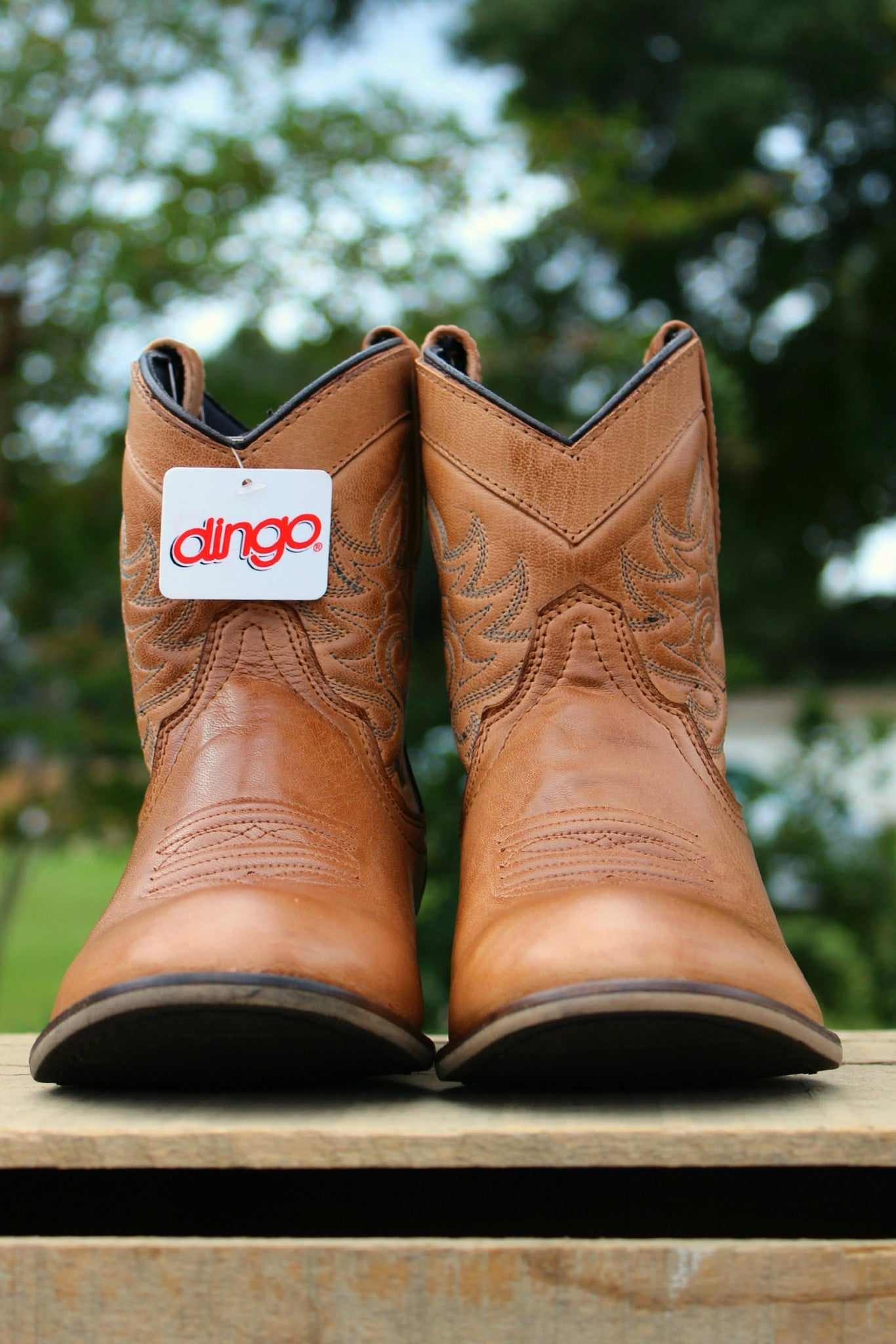 Dingo: Willie Boots, Brown
