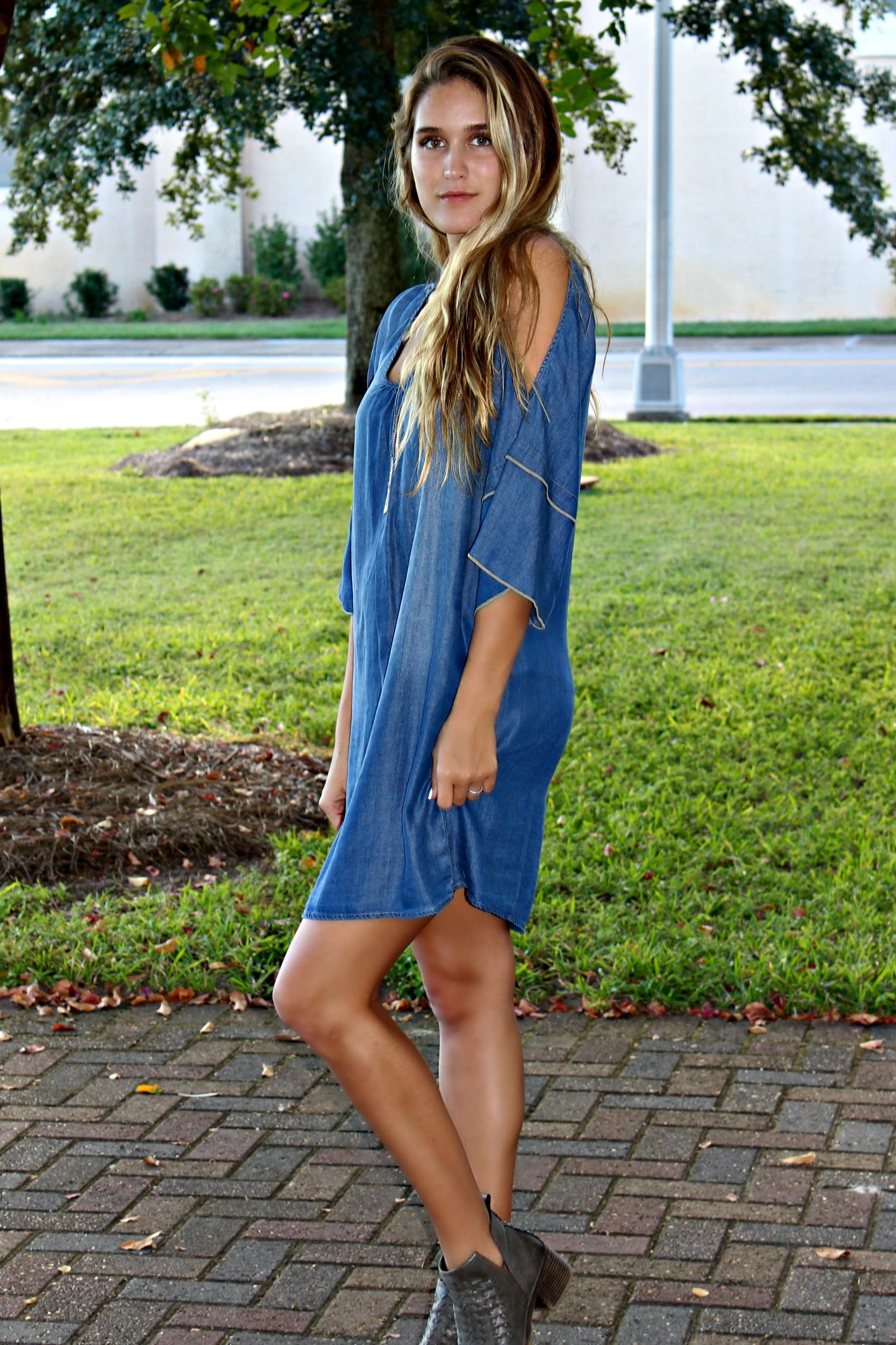 Fun Days Ahead Dress, Denim