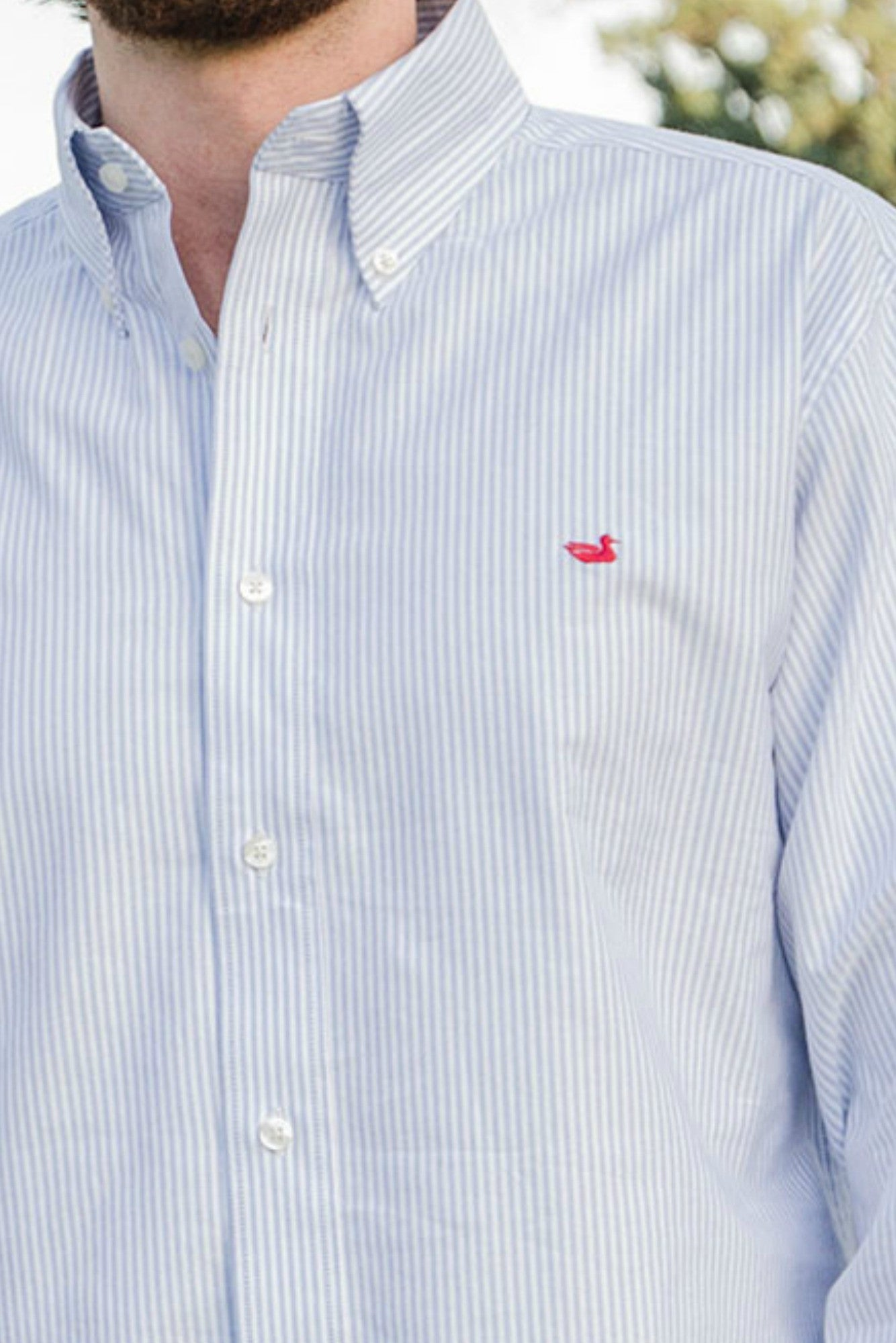 Southern Marsh: Striped Pintail Oxford Dress Shirt, Blue
