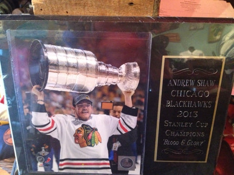 Blackhawks Plaque Andrew Shaw