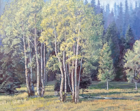 North Rim Aspens - Oil Paintings by artist John Horejs