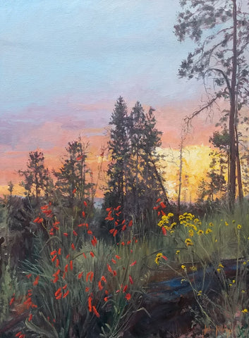 Vista Point Sunset - Oil Paintings by artist John Horejs