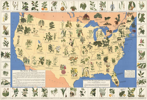 Medicinal plant map of the United States of America