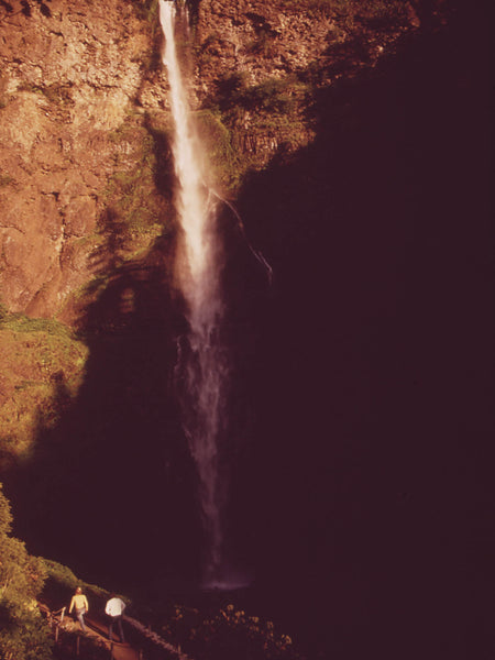 MULTNOMAH FALLS, WHICH FALLS 542 FEET INTO A BASIN WHICH ENTERS THE COLUMBIA RIVER