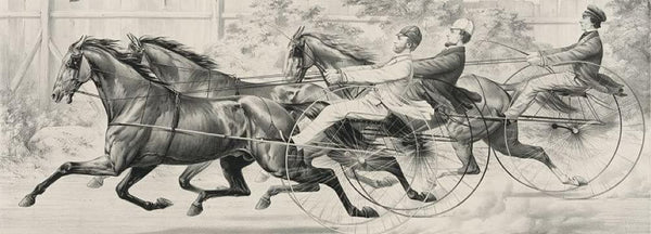 George M. Patchen Brown Dick and Millers Dansel: in their splendid trotting contest for a purse of $500 - over the Union Course L.I. July 7th 1859