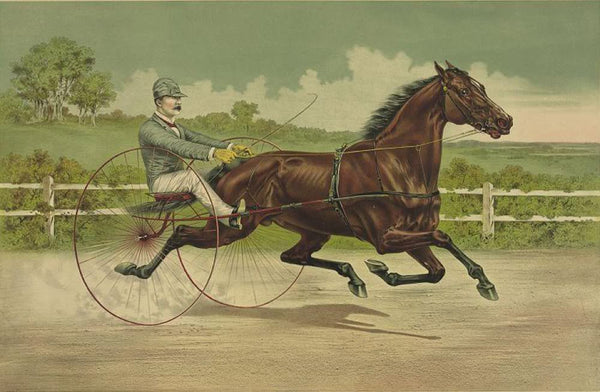 The grand trotting stallion Axtell by William L. by George Wilkes