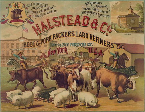 Halstead & Co. beef & pork Packers Lard Refiners & Co.