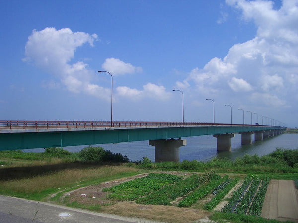 Ooagabashi bridge