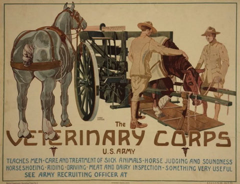 The Veterinary Corps U.S. Army teaches men care and treatment of sick animals; horse judging and soundness; horseshoeing; riding; driving; meat and dairy inspection - something very useful