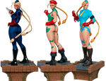 Cammy: Evolution