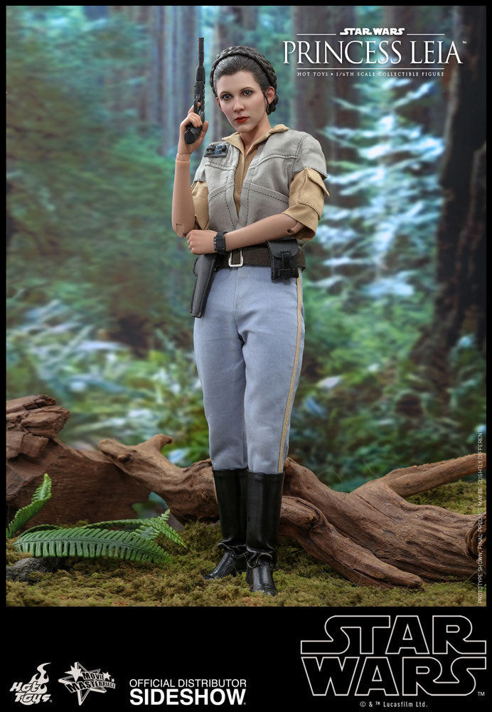 Princess Leia and Wicket Collectible Figures Set