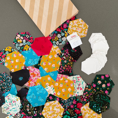 Quick start EPP kit - hexies